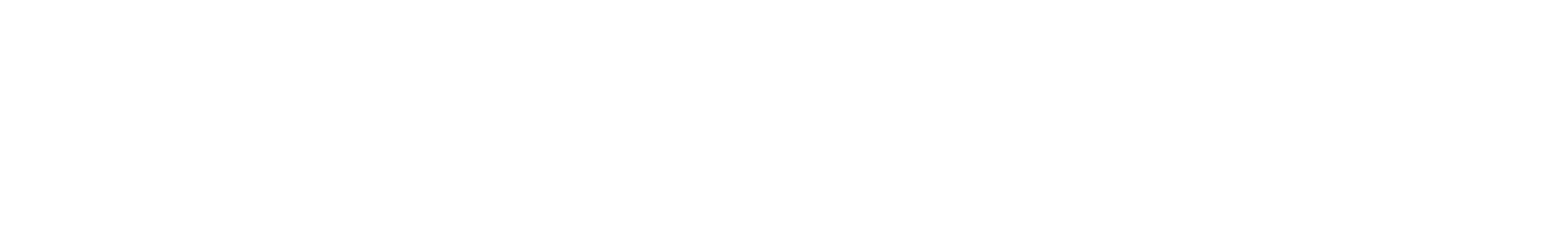 Calle Hammer